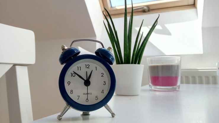 round blue alarm clock with bell on white table near snake plant