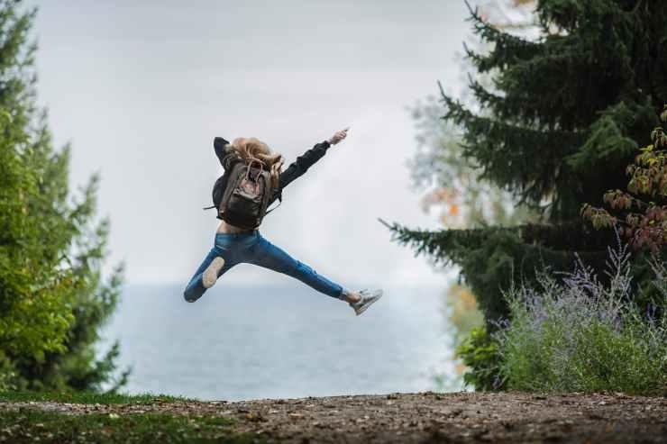 Photo by Sebastian Voortman on Pexels.com